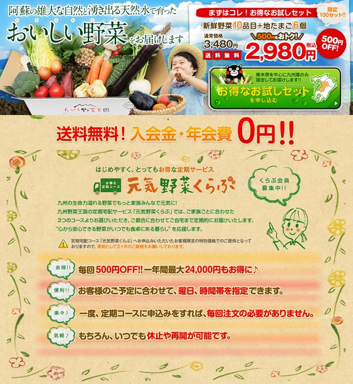 「九州野菜王国」野菜食材宅配お試しセット